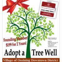 Tree Well poster